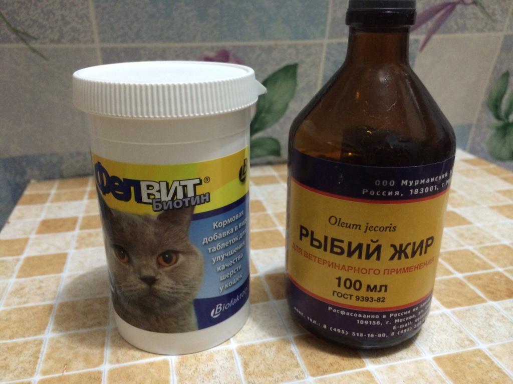 Рыбий жир для беременной кошки